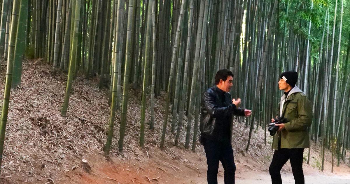 สมุดโคจร | ป่าไผ่จุคโนกควอน (Juknokwon)