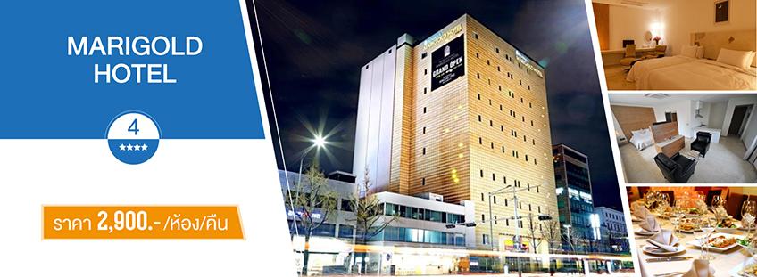 โรงแรม  Marigold Hotel 2600 บาท