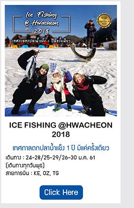 Ice Fishing @ Hwacheon ตกปลาน้ำแข็ง 1 ปีมีครั้งเดียว